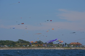 Kites on the beach in Newport